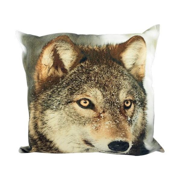 Vankúš Winter Wolf in Snow 50x50 cm