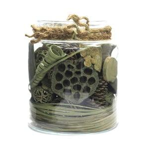 Dekoratívna dóza so sušenými kvetinami 360 Living Exotic Green