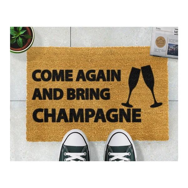 Rohožka Artsy Doormats Come Again & Bring Champagne, 40x60cm