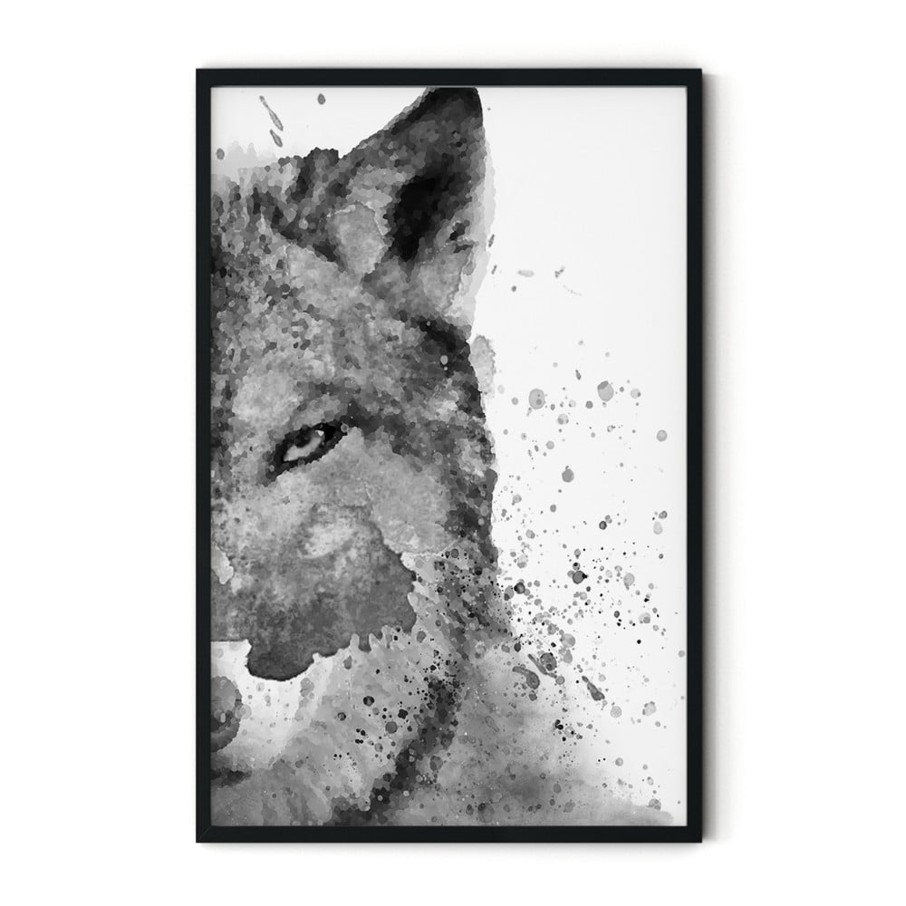 Plagát v ráme Insigne Foxy, 70 x 110 cm