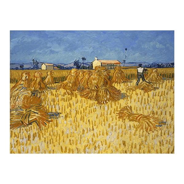 Obraz Vincenta van Gogha - Corn Harvest in Provence, 70x50 cm