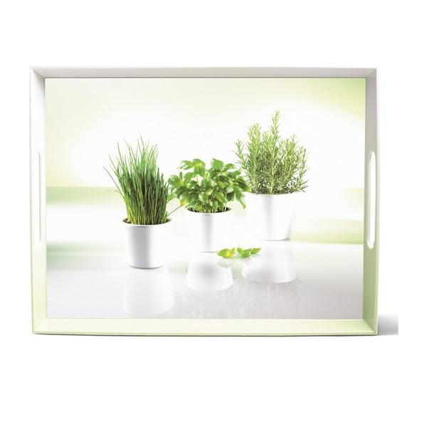 Podnos Classic Herbs, 40x31 cm