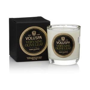 Sviečka s vôňou palisandru a olivových a citrusových listov Voluspa Maison Votive, 25 hodín horenia