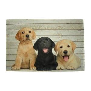 Prestieranie Mars&More Puppies Labrador, 40 x 30 cm