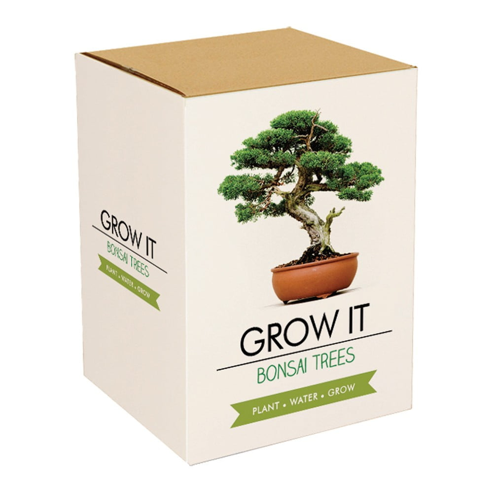 Pestovateľský set so semienkami bonsaja Gift Republic Bonsai Trees