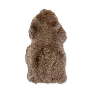 Ovčia kožušina s krátkym vlasom Arctic Fur Taupe, 100 × 60 cm