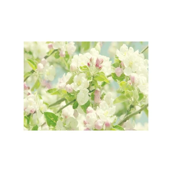 Obraz Na jar, 45x70 cm