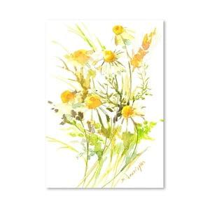 Plagát Yellow Chamomiles od Suren Nersisyan