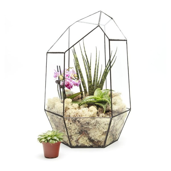 Terárium s rastlinami Super Aztec Gem