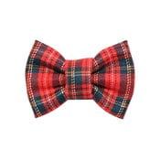 Červeno-zelený károvaný charitatívny psí motýlik Funky Dog Bow Ties, veľ. L