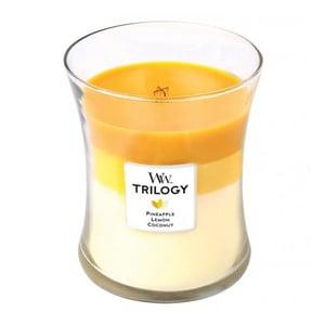 Vonná sviečka Woodwick Plody leta, 60 hodín