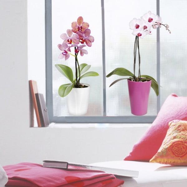 Samolepka na okno Orchidea