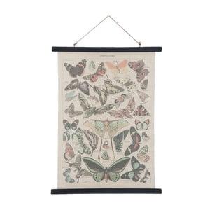 Plagát Clayre & Eef Butterflies
