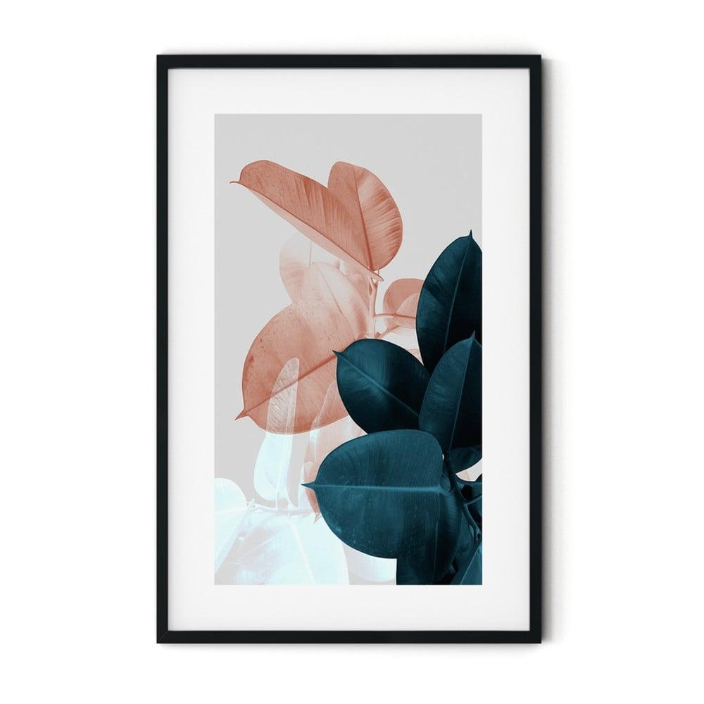 Plagát v ráme Insigne Ficus, 70 x 110 cm