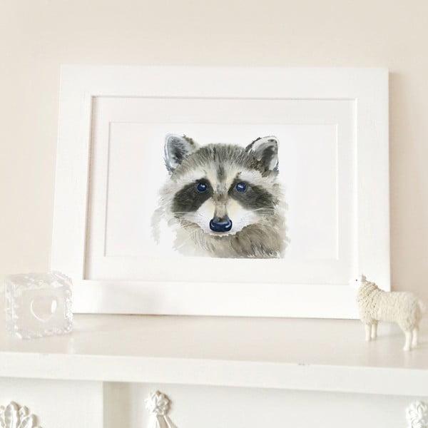 Plagát Raccoon A4