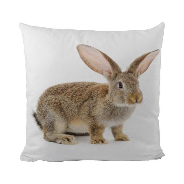Vankúš This Bunny, 50x50 cm