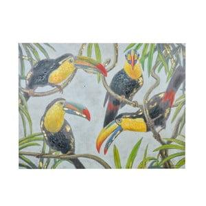 Obraz s motívom tukanov Dino Bianchi, 90 x 120 cm