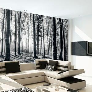 Veľkoformátová tapeta In Forest, 315x232 cm