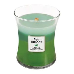 Vonná sviečka Woodwick Prechádzka lesom, 60 hodín