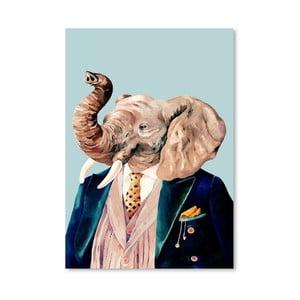 Plagát Elephant, 30x42 cm