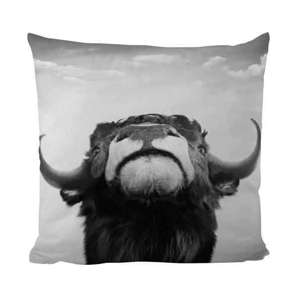 Vankúšik Black Shake The Bull, 50x50 cm