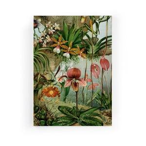 Obraz zo zamatového plátna Velvet Atelier Potion, 50×70 cm