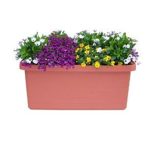 Veľkoobjemový samozavlažovací kvetináč vo farbe terakoty Plastia Berberis DUO, 54 l