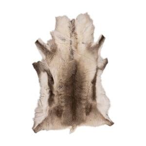 Hnedo-béžová kožušina Reino, 120 x 100 cm