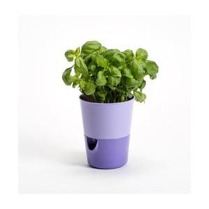 Levandulovo-fialový samozavlažovací kvetináč Plastia Rosmarin