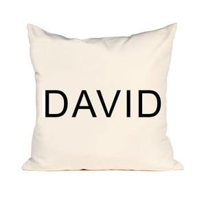Vankúš David, 50x50 cm