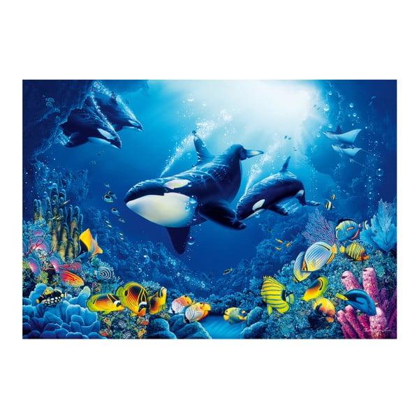 Veľkoformátová  tapeta Podmorský svet , 366x254 cm