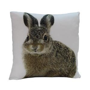 Vankúš Rabbit Edie, 45x45 cm