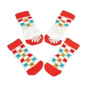 Ponožky pre psieho maznáčika Rex London Poppy, stredné