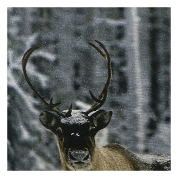 Vankúš Sepia Reindeer Nature 50x50 cm