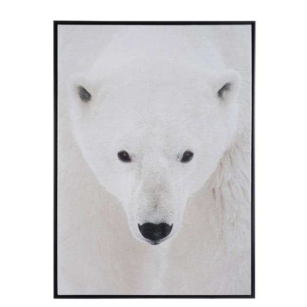 Zarámovaný plagát Polar Bear, 100x140 cm