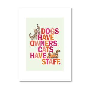 Autorský plagát Dogs have owner