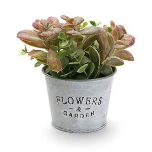 Kovový kvetináč s rastlinkou Flower Garden