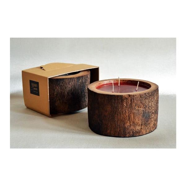 Palmová sviečka Legno Bordeux s vôňou exotického ovocia, 100 hodín horenia