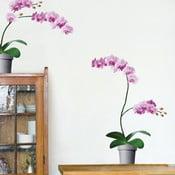 Samolepka na stenu Ružové orchidey