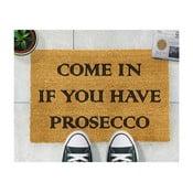 Rohožka Artsy Doormats Prosecco, 40×60cm