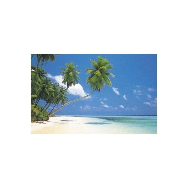Fotoobraz Maledives, 51x81 cm