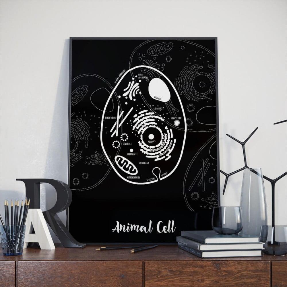 Čierny plagát Follygraph Animal Cell d6276055637