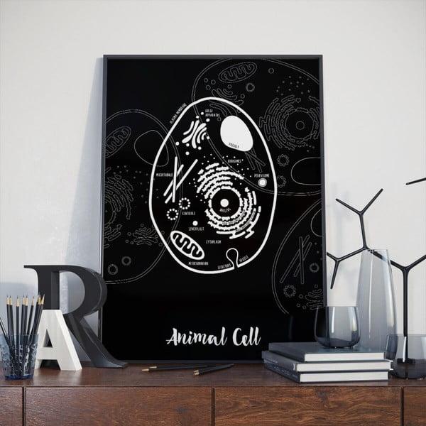 Čierny plagát Follygraph Animal Cell, 30x40cm