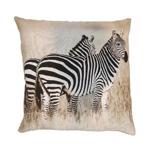 Vankúš Zebra, 50x50 cm