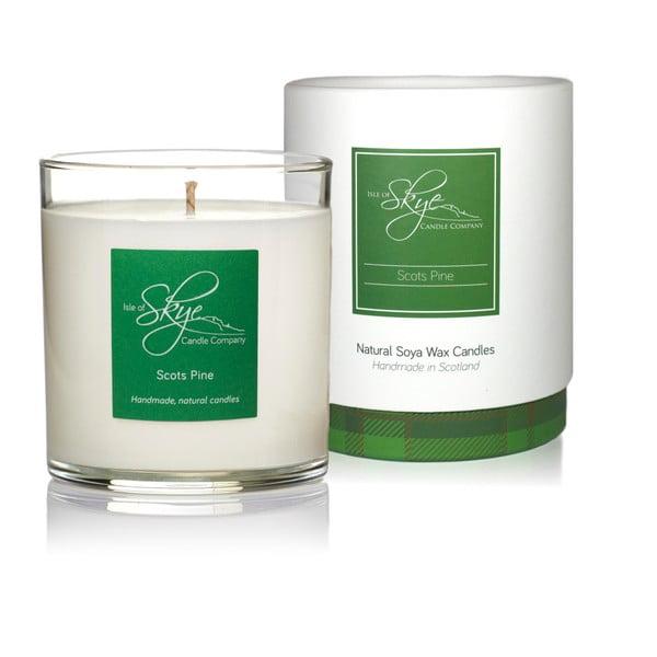 Sviečka s vôňou škótskej borovice, myrice, pačuli a korenia Skye Candles Tumbler, dĺžka horenia 45 hodín