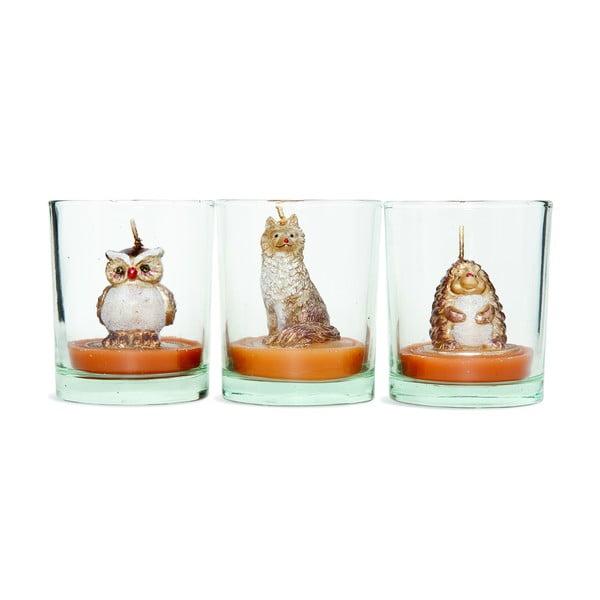 Sada 3 svietnikov Owl