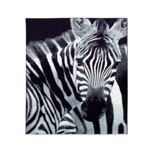 Koberec Safari - zebra, 160x225 cm