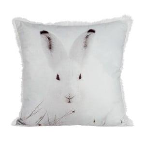 Vankúš Rabbit Velvet, 45x45 cm