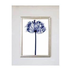 Obraz Piacenza Art Wildo, 30 × 20 cm