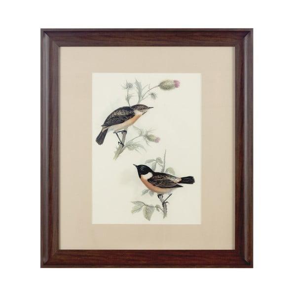 Obraz Birds Brown, 55x62 cm